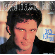 David Hasselhoff – Crazy For You